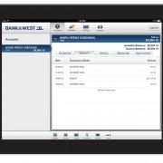 iPad Accounts Overview